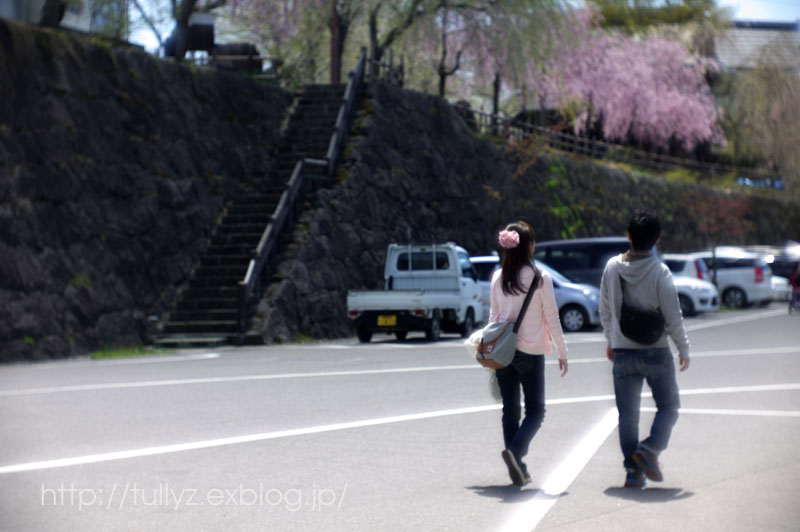 飯山の桜 (2)_d0108132_1649039.jpg