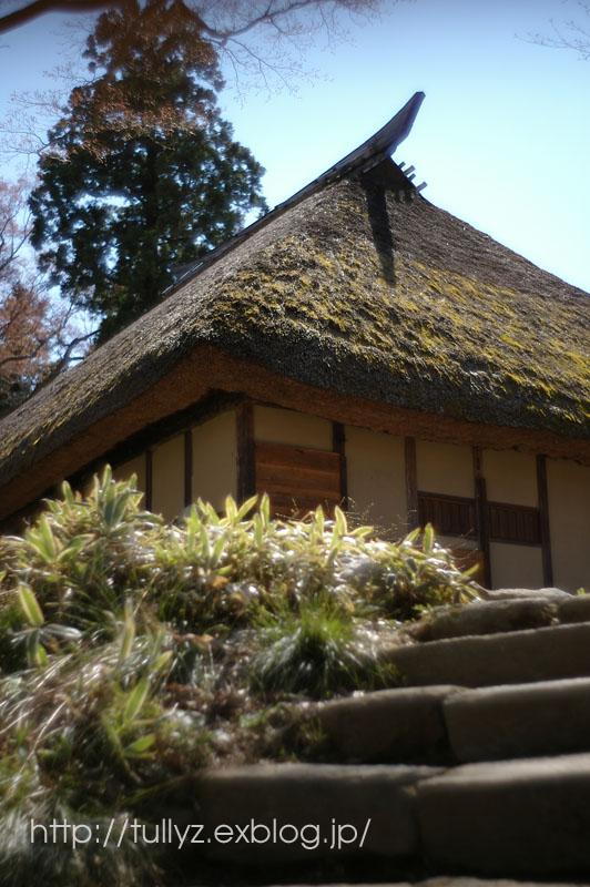 飯山の桜 (3)_d0108132_16502426.jpg