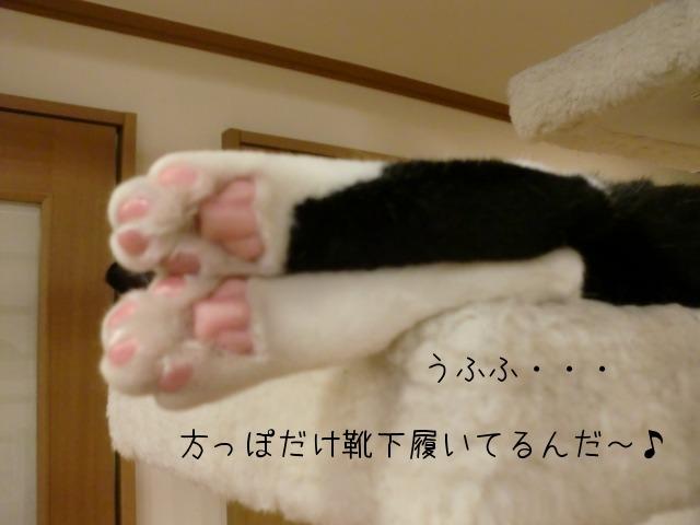c0259945_1192124.jpg