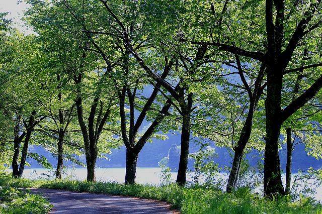 水辺の風景 8_c0155950_23132638.jpg