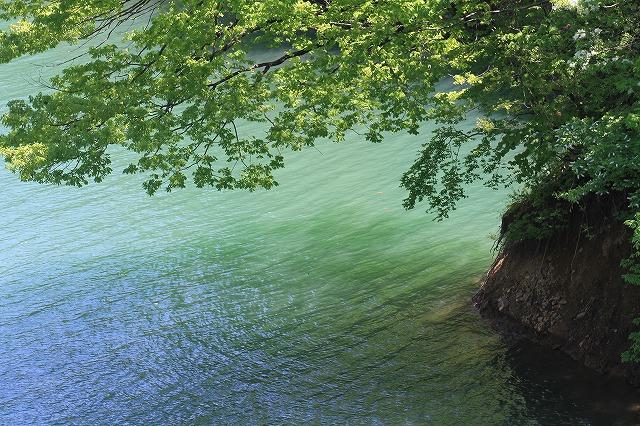 水辺の風景_c0155950_2335035.jpg