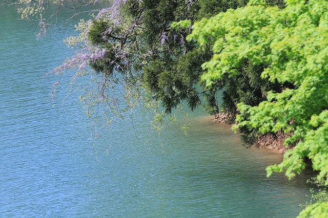 水辺の風景 2_c0155950_235947.jpg