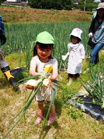 竹松農園でお野菜の収穫体験_d0298850_12533142.jpg