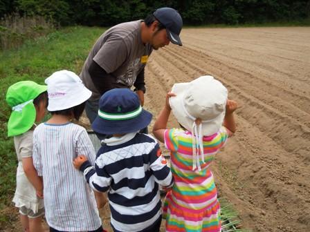 竹松農園でお野菜の収穫体験_d0298850_1323314.jpg