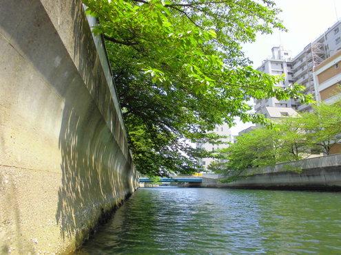 水門から水門_c0249569_152557.jpg