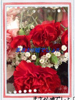 b0133870_1321956.jpg