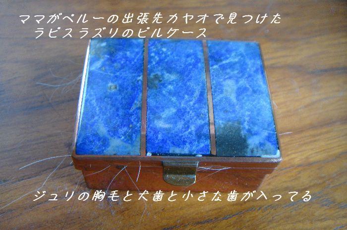 b0101991_1333580.jpg