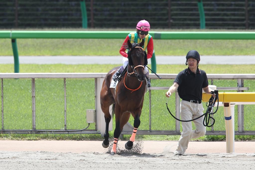 2013年5月19日 優駿牝馬(オークス)_f0204898_2256165.jpg