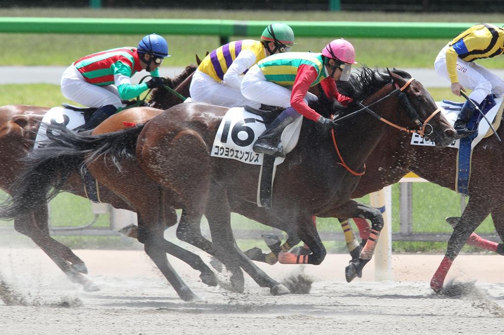 2013年5月19日 優駿牝馬(オークス)_f0204898_2256238.jpg