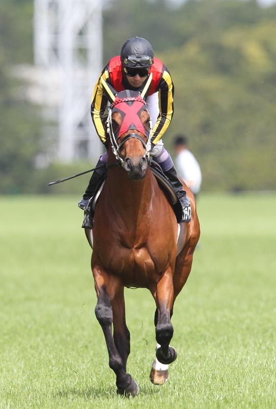 2013年5月19日 優駿牝馬(オークス)_f0204898_2257122.jpg