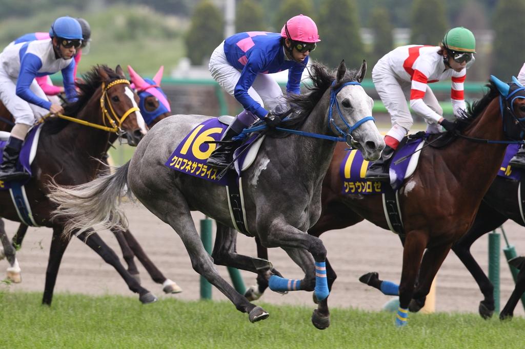 2013年5月19日 優駿牝馬(オークス)_f0204898_22575277.jpg
