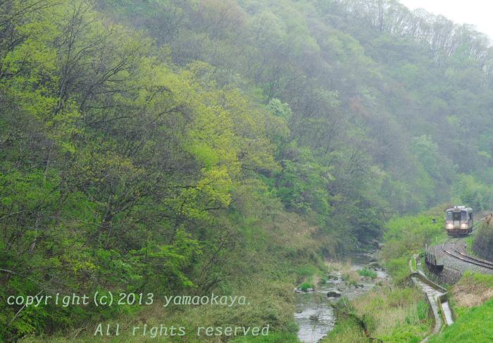 いきなりの雨_d0309612_1223119.jpg