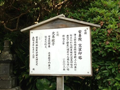 横浜三渓園_d0259861_9503611.jpg