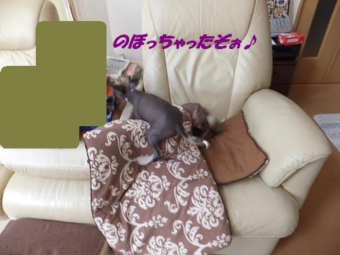 f0179203_183914.jpg