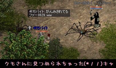 f0072010_9212927.jpg