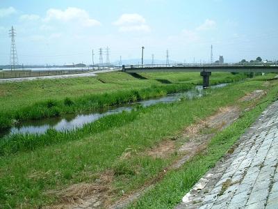 バードウォッチング ~ 秋津川 ~_b0228113_17403398.jpg