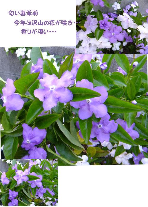 f0032418_19105458.jpg