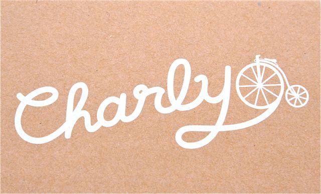 Charly kotori chain lock チャーリー おしゃれ 自転車 ロック カギ_b0212032_21174952.jpg