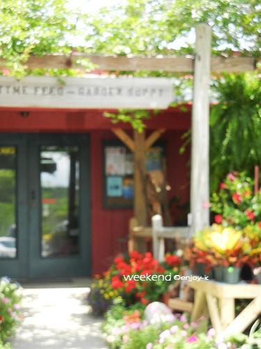 地元の園芸店へ*ガーデニング準備 _d0269832_0535494.jpg