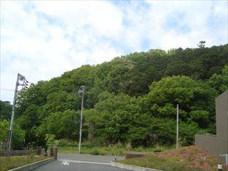 満喫横浜_e0120938_22161045.jpg