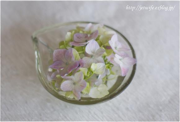 花の殺生 紫陽花_a0254243_23162878.jpg
