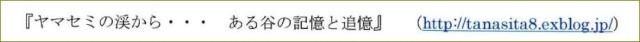 《 「金子みすず」 絵葉書 三枚セット封筒付 》_f0159856_6182210.jpg