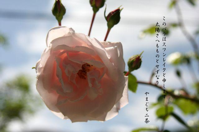d0244960_19483135.jpg