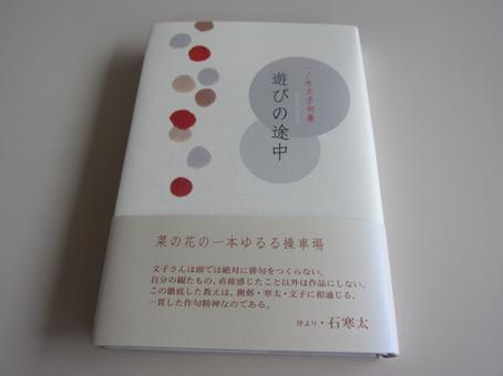 f0071480_19561239.jpg