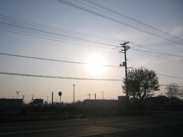 暑くなってきましたね(;^ω^)_a0291590_1744618.jpg
