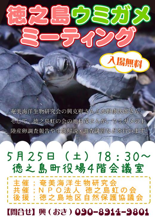 徳之島ウミガメミーティング開催のお知らせ_a0010095_11185658.png