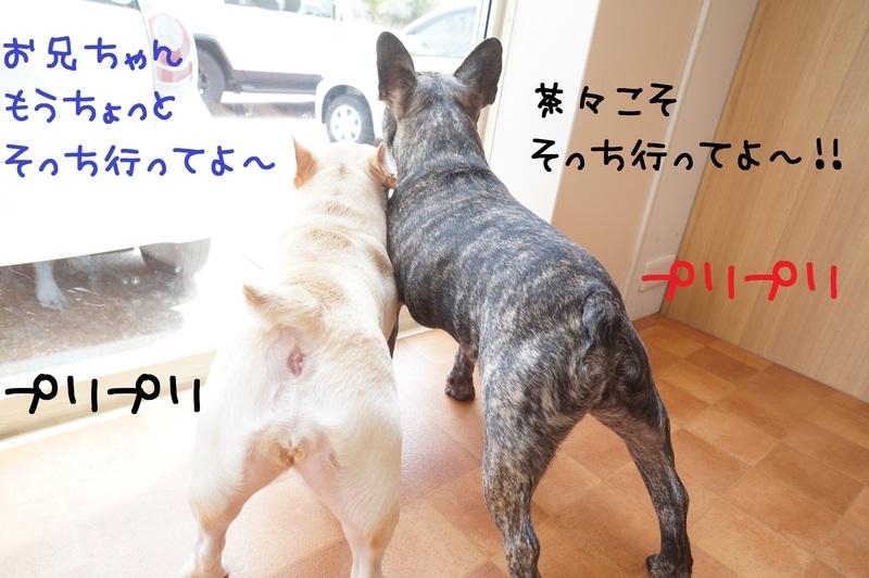 d0220513_1924076.jpg
