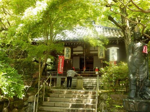 今熊野観音寺 ここも青もみじ_e0048413_213042.jpg
