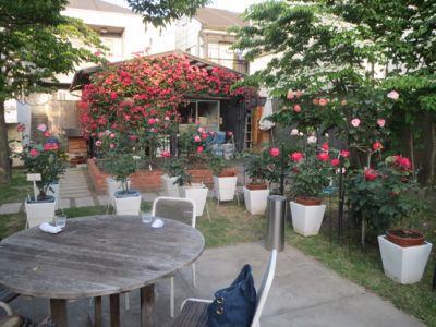 薔薇のカフェ_c0223630_22383164.jpg