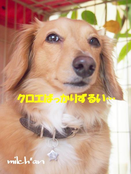 b0115642_22323518.jpg