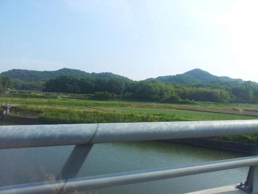 兵庫県 姫路 TATTOO タトゥー 刺青_a0148054_1922683.jpg