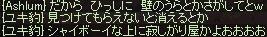 a0201367_2346150.jpg