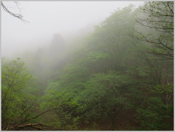 八丁平・湿原ハイク_c0036080_144850.jpg