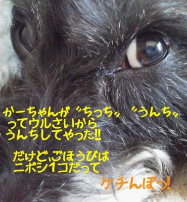 f0055395_167387.jpg