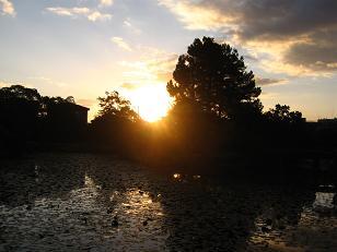 """""""Soleil(ソレイユ)"""" 太陽という名にこめた思い_c0098807_20515628.jpg"""