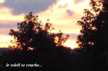 """""""Soleil(ソレイユ)"""" 太陽という名にこめた思い_c0098807_21165563.jpg"""