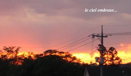"""""""Soleil(ソレイユ)"""" 太陽という名にこめた思い_c0098807_2121484.jpg"""