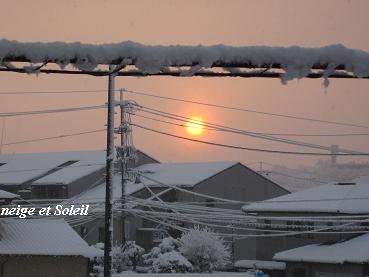 """""""Soleil(ソレイユ)"""" 太陽という名にこめた思い_c0098807_21311071.jpg"""