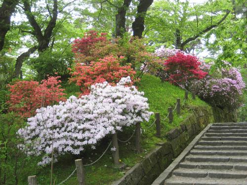 *千秋公園*_e0197227_15364087.jpg