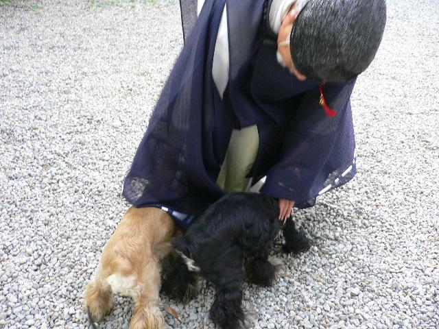 ワンコのお守り 吉水神社_c0223630_16353114.jpg