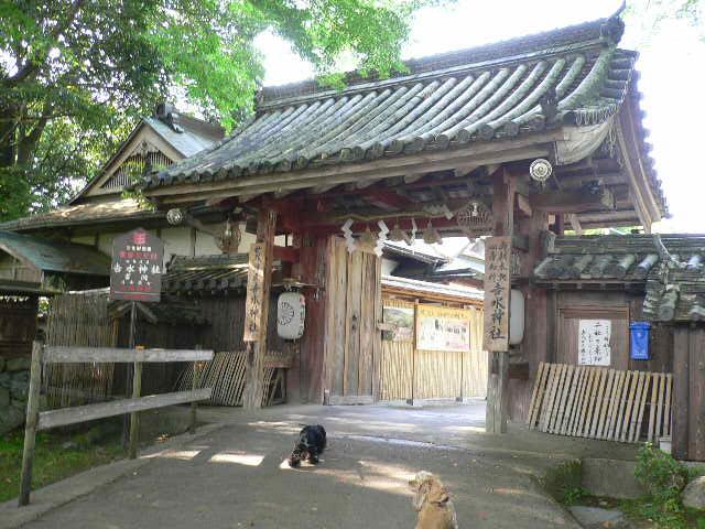 ワンコのお守り 吉水神社_c0223630_165505.jpg