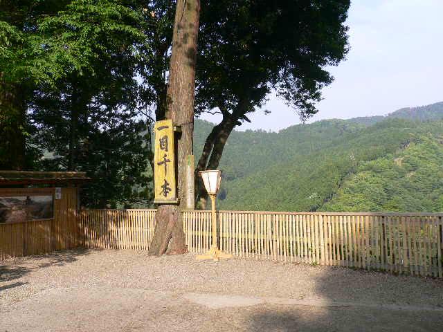 ワンコのお守り 吉水神社_c0223630_1713716.jpg