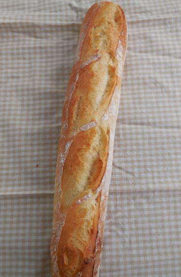 カメリアでフランスパン♪_a0175348_10421198.jpg