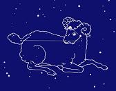 葵祭・染められた色無地に星座の刺繍紋のお客様_f0181251_17403821.png