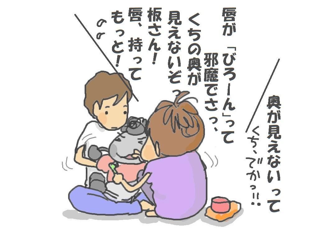 歯磨き、始めました(*_ _)♪_f0096569_729057.jpg