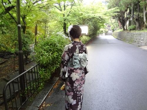 京都 舞妓さん芸妓さん_f0093292_1558029.jpg